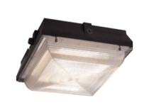 VANDALEX III LARGE LED – SERIES 168L